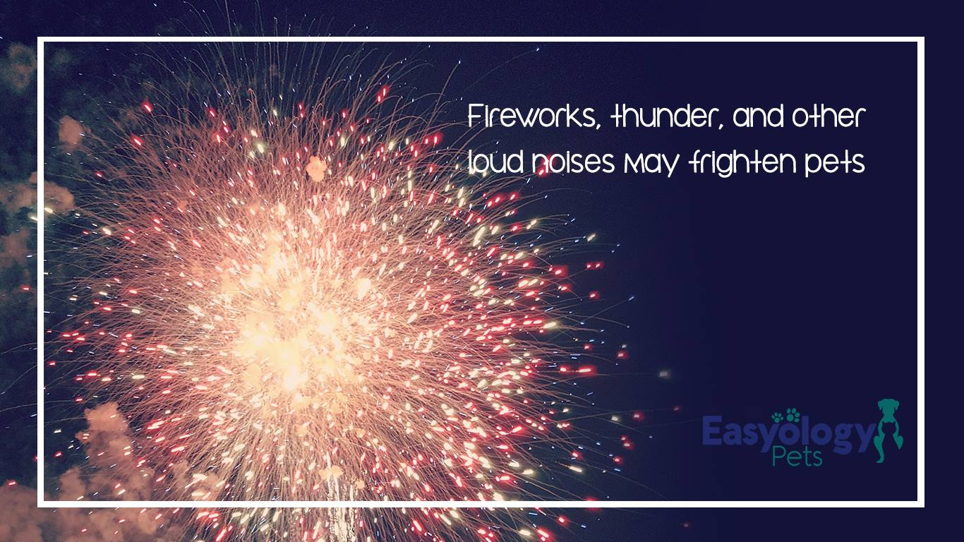 Fireworks Thunder and loud noises may frighten pets causing them to run away.