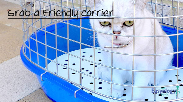 Get a Friendly Cat Carrier