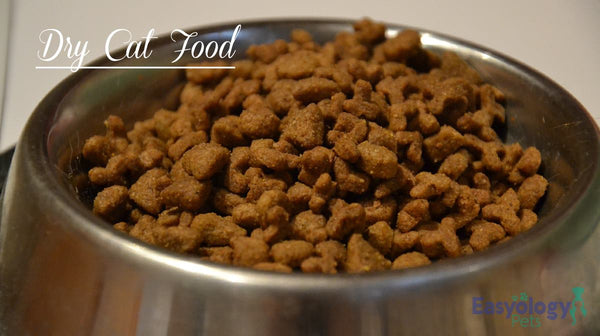 Dry Cat Food Pros and Cons