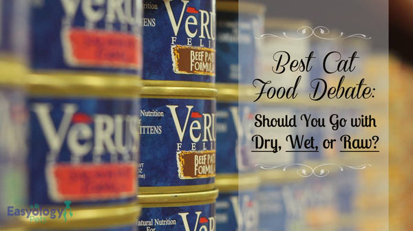 Best Cat Food Debate: Should You Go with Dry, Wet, or Raw?