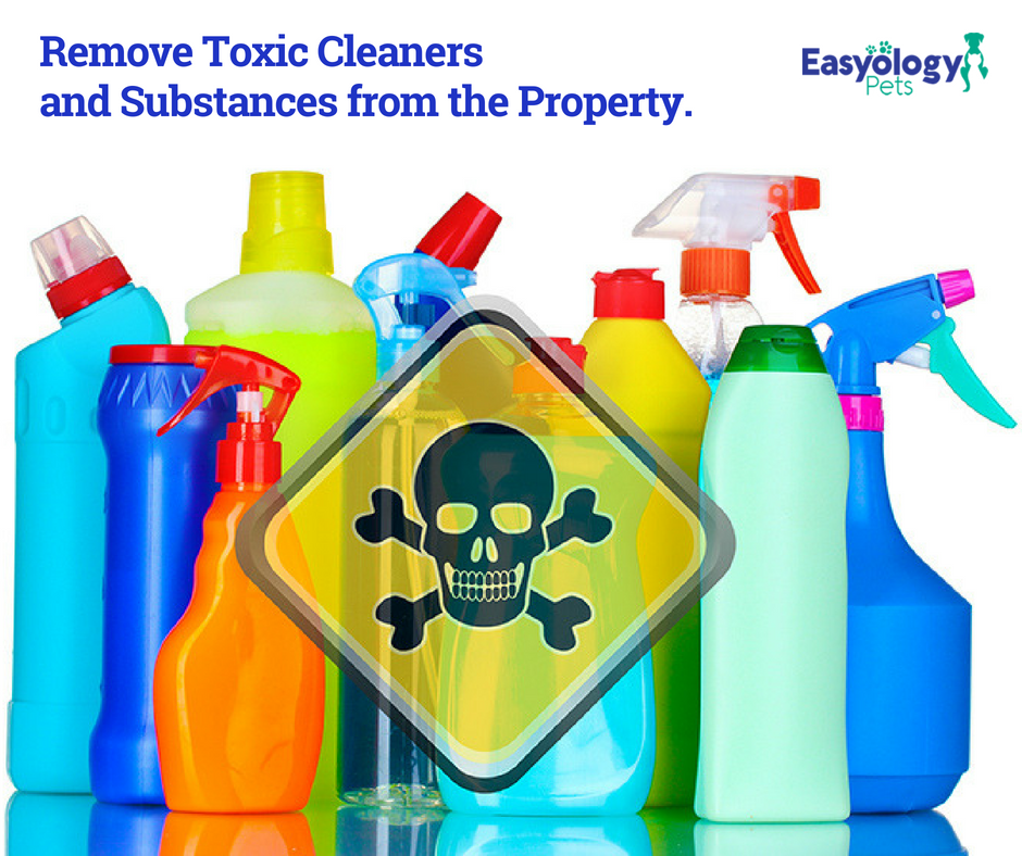 Remove Toxic Cleaners
