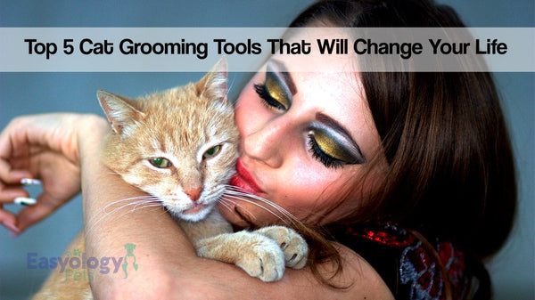 Top 5 Cat Grooming Tools That Will Change Your Life