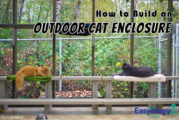 How to Build an Awesome Outdoor Cat Enclosure