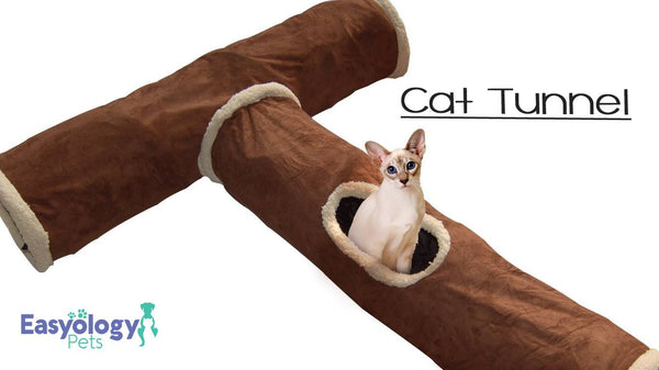 Let Your Cats' Ninja Skills Shine with the Easyology Premium Cat Tunnel Toy Maze