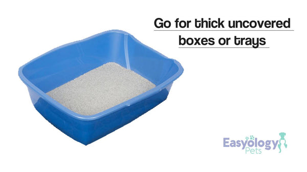 Opt for Uncovered Cat Litter Boxes