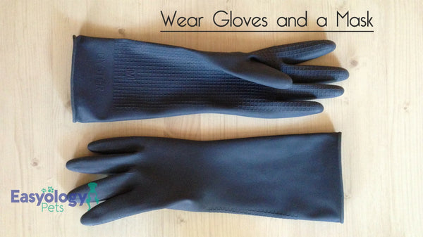 Wearig Gloves and Masks Protects You from Bacteria and Parasites Living in Your Cat Litter Box
