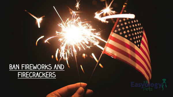 Stay Away from Fireworks and Firecrackers