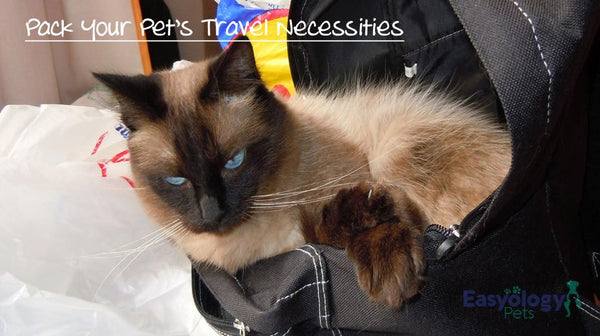 Prepare and Pack Your Cat's Travel Necessities