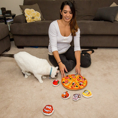 Interactive Cat Pizza Toy - Served in a Pizza Box