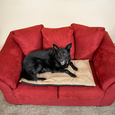 Jumbo Size Thermal Pet Warming Bed