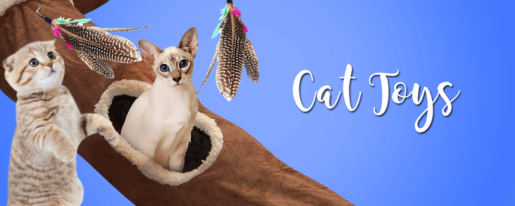 Easyology Pets Welcome To Easyology Pets Premium Cat