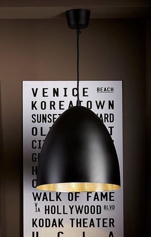 Pendant Light Egg Black Label/Silver Ceiling Lamp