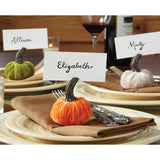 Mud Pie Home Velvet Pumpkin Autumn Thanksgiving Placecard Holder Set of 3 Colors 1 Each Color