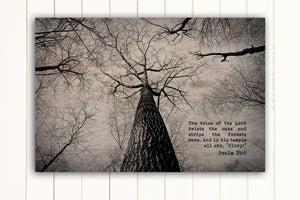 Wood Inspired Scripture Art: Psalm 29:9 on Canvas - Hunnycomb Proverbs - Wedding gift ideas - paper anniversary gifts