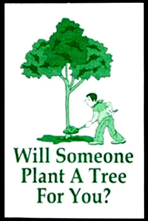 Tracts, Will Someone Plant A Tree For You? (Pack of 100)