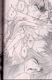 inuyasha-tragic-night-sesshomaru-x-inuyasha - 3