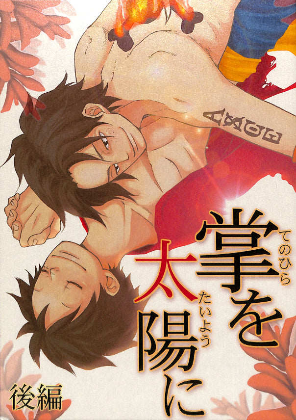 One Piece Doujinshi - You Hold the Sun in the Palm of Your Hand - Final (Ace x Luffy) - Cherden's Doujinshi Shop - 1