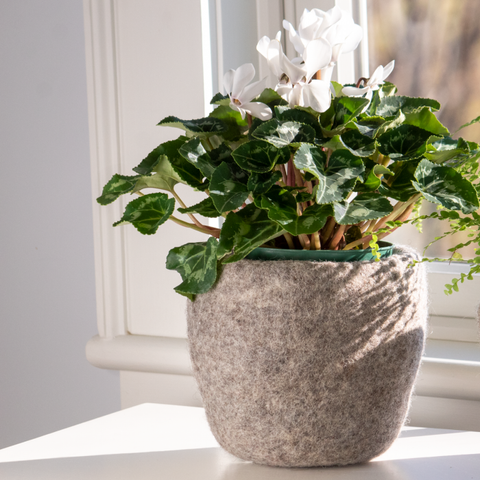 Cozy Felt Planter | Large | Steel
