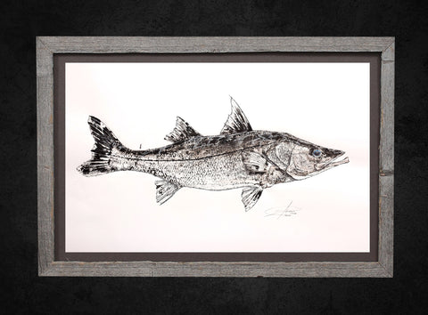 Snook Gyotaku