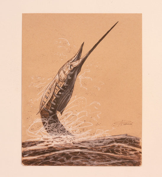 Sailfish Study