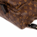 Louis Vuitton Palm Springs Backpack PM