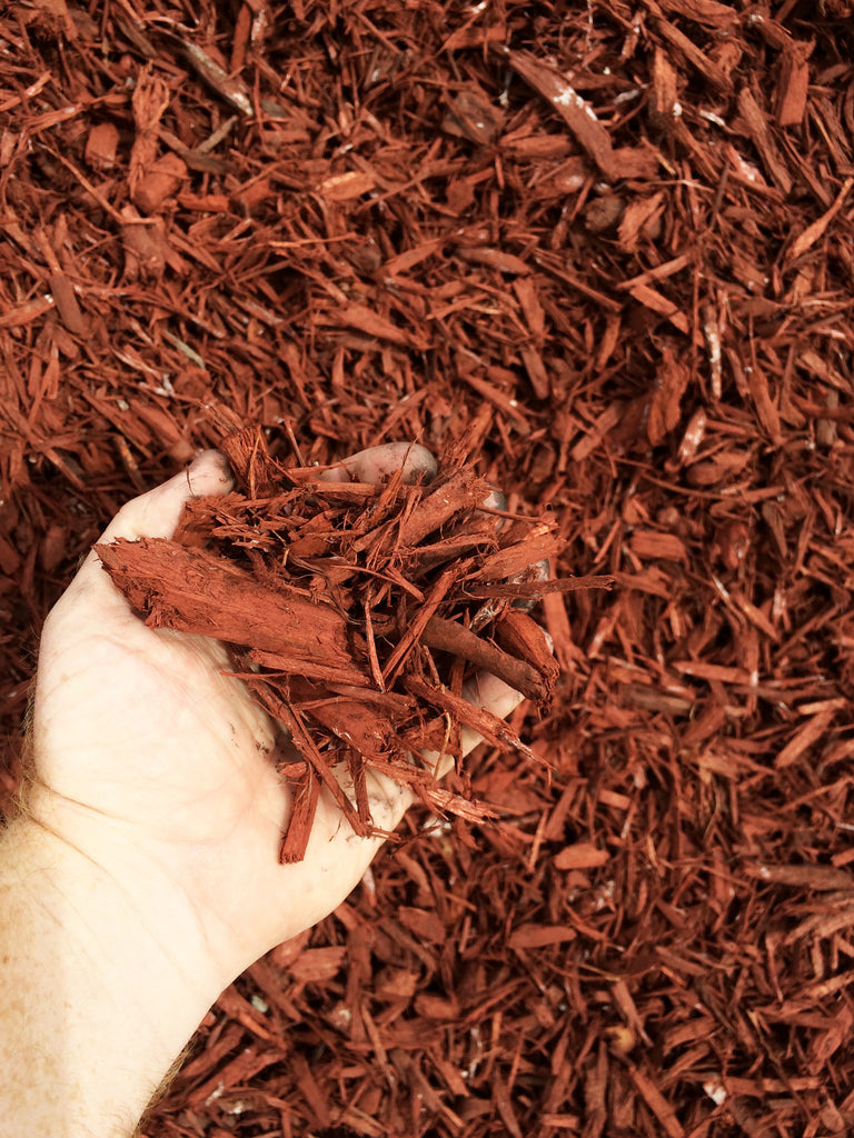 BULK MIGHTY109 Raging Red Mulch