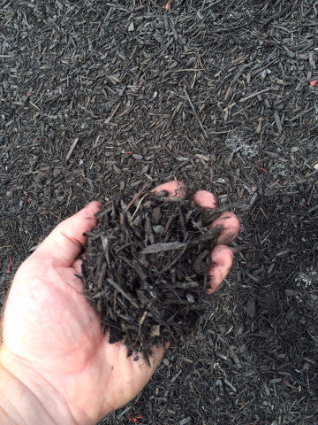 BULK MIGHTY109 Bold Black Mini Mulch