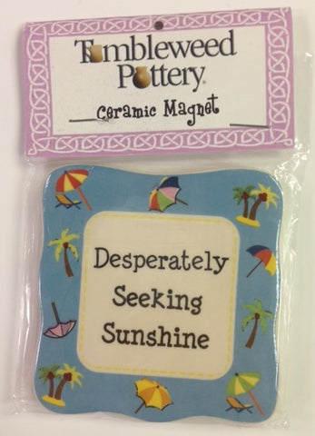 "#6920 - 3""D MAGNET-SEEKING SUNSHINE  -  192/CASE"