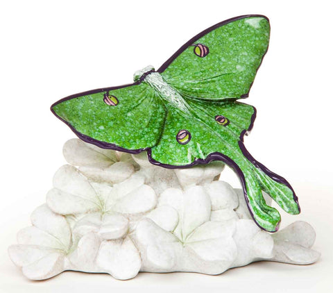 #B5030072 - LUNA MOTH-STONECAST COLLECTION  -  18/CASE