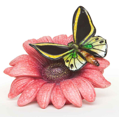 #B5030074 - YELLOW QUINCEANERA BUTTERFLY STONECAST COLLECTION  -  18/CASE
