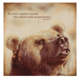 #B5050007 - BEAR BE GOOD NIGHTLIGHT  -  48/CASE