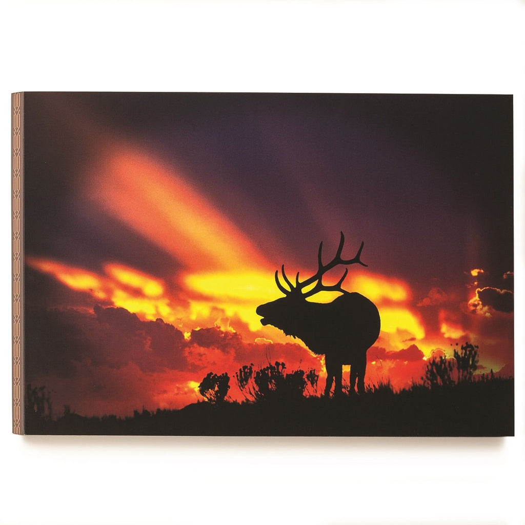 #D3005050278 - OP SUNSET ELK 24X16 WALL ART  -  6/CASE