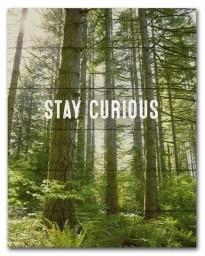 "#SCE1003 - 11"" X 14""PLAQUE-STAY CURIOUS  -  16/CASE"