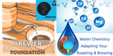 Brewing Foundation Advanced Water