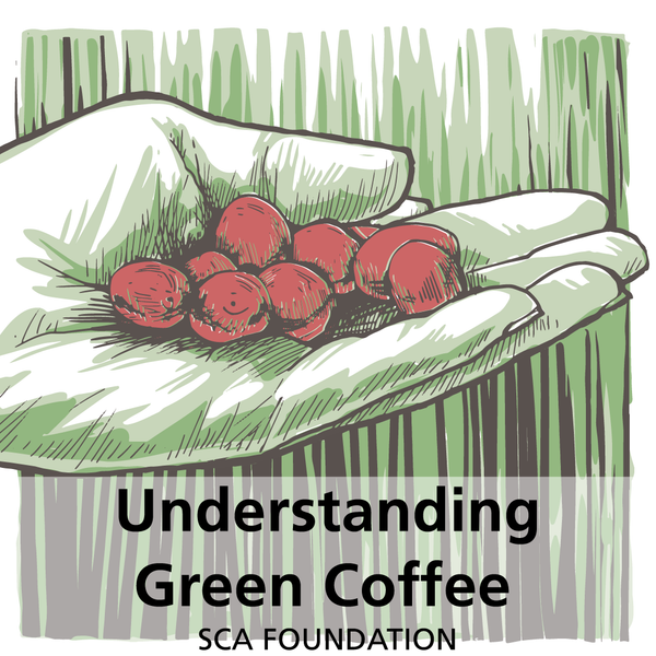 Roaster Level 1 Plus Understanding Green Coffee (SCA Roaster Intermediate)