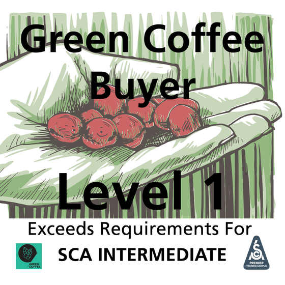 Green Coffee Level 1 (SCA Green Intermediate With More Depth & Breadth)