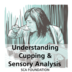 Understanding Cupping and Sensory Analysis