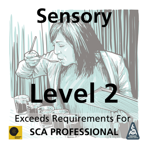 Sensory Level 2 Advanced Skills Application (SCA Professional Plus)