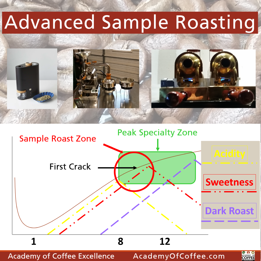 Roasting Intermediate + Advanced Sample Roasting Training