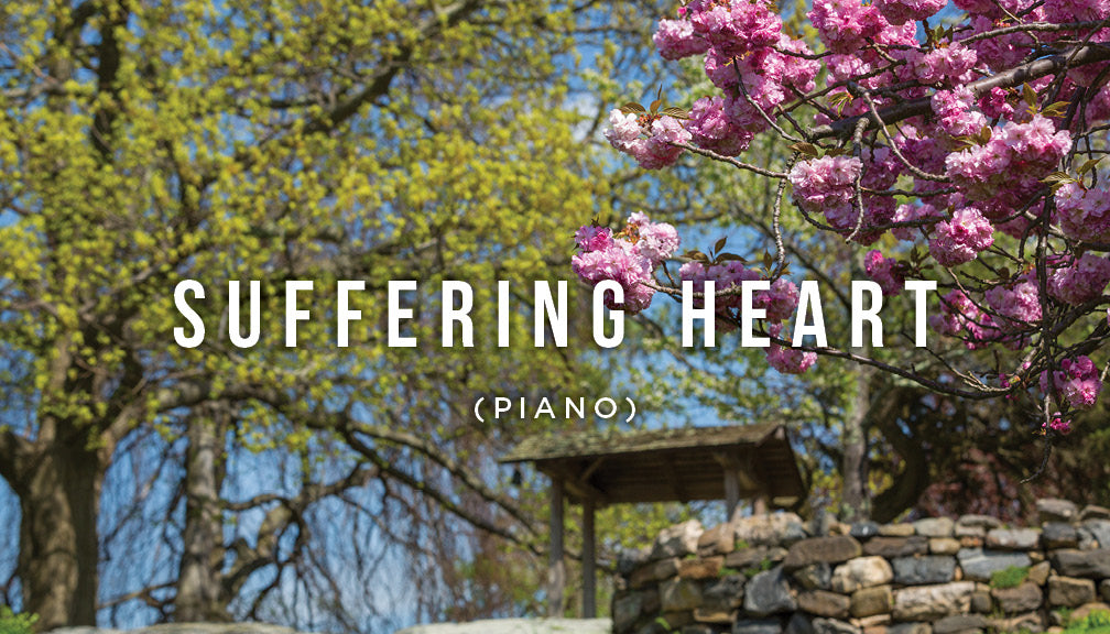 Meditation: Suffering Heart
