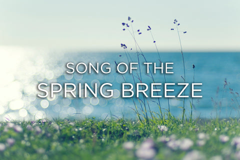 Song of the Spring Breeze (Piano Version)