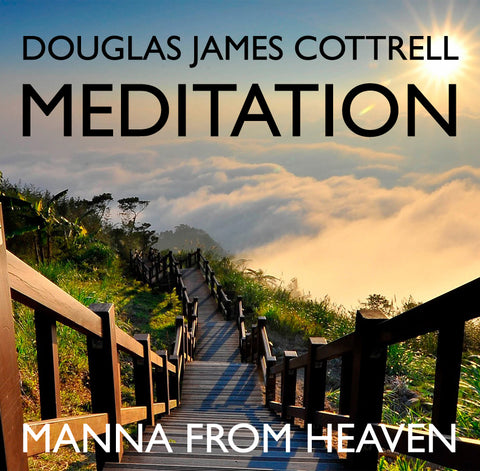 Manna From Heaven: Foundations of Quantum Meditation™ Module