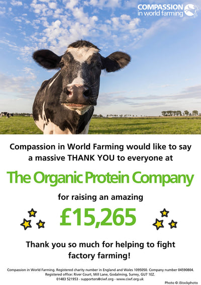 £15,265 Donated to Compassion in World Farming