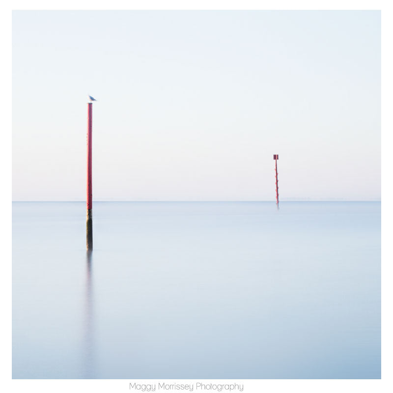 'Perch' Soothing Coastal Photography