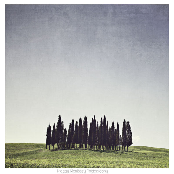 'The Glade' Tuscany Wall Art Print