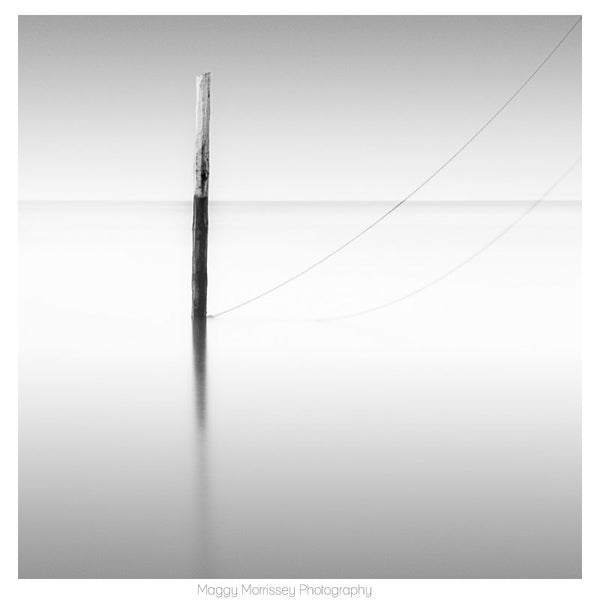 'Oh So Quiet' Minimalist Fine Art Print