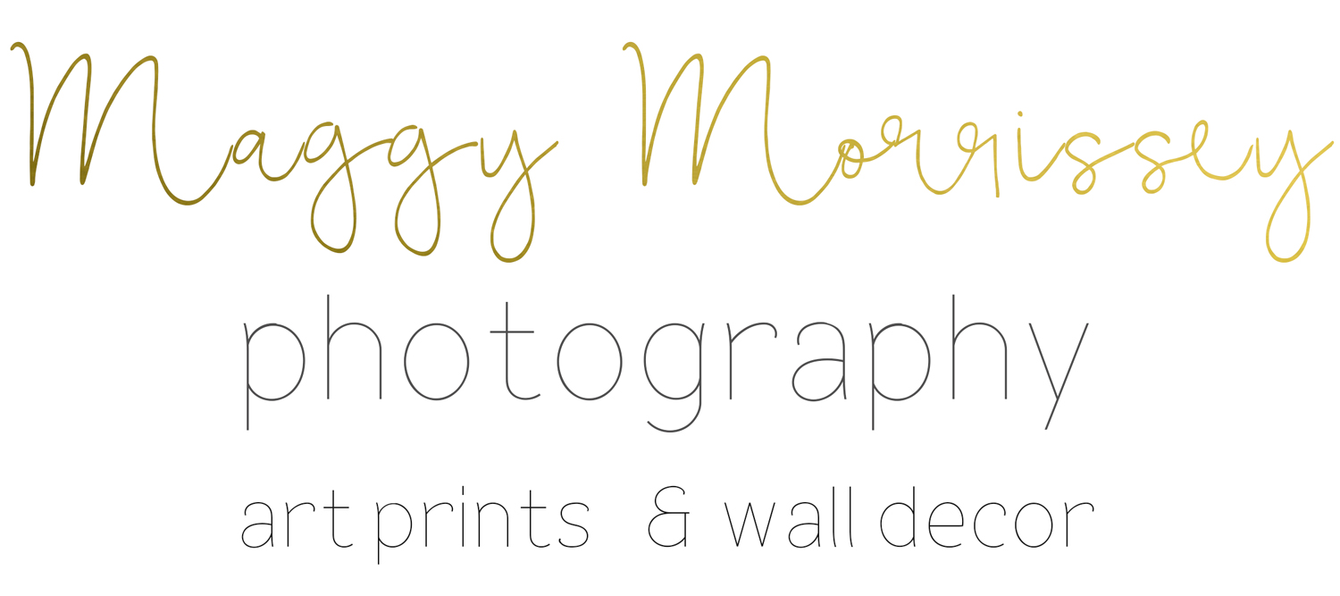 Maggy Morrissey: Photography, Art Prints, Wall Decor