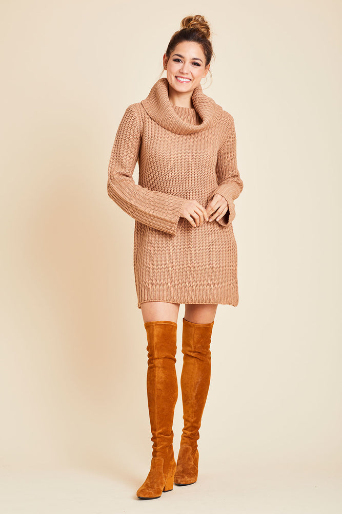 BB Dakota Couldn't Be Sweeter Cowlneck Sweater Dress
