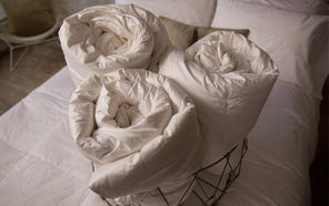 Thumbnail of: Down Duvet