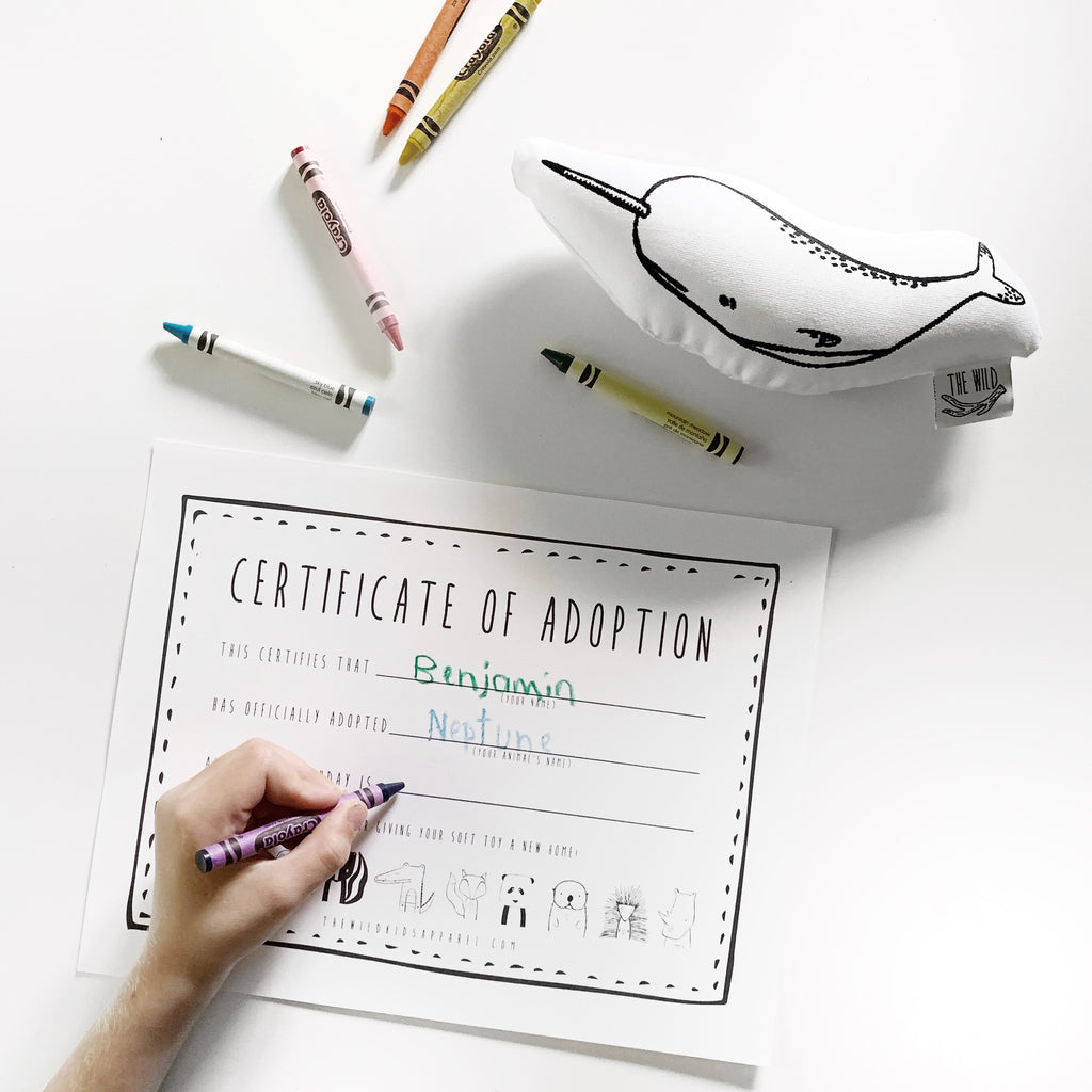 Free Printable - Certificate of Adoption for Your Little One's Soft Toy